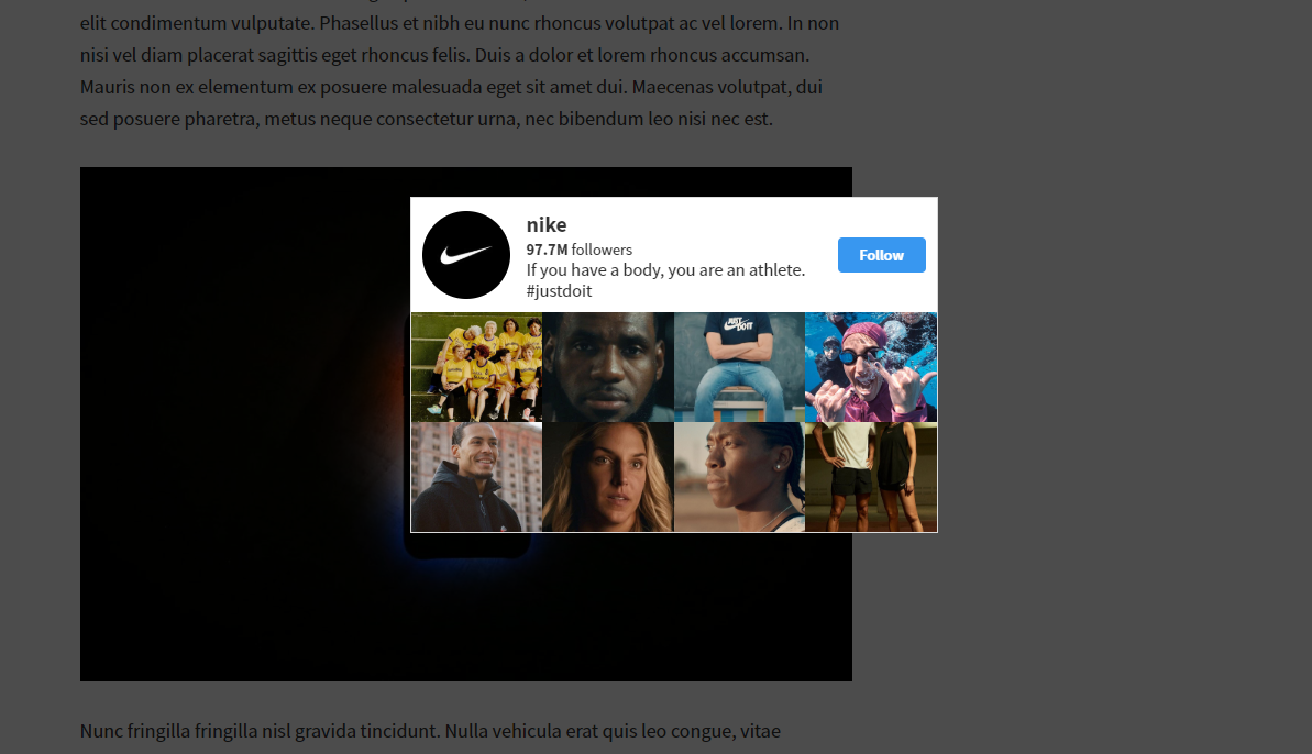 How to Add Instagram Feed on Your Website (Automatic or Manual) 3